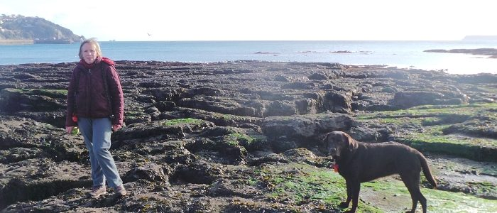Walking by the sea at lowtide near Torquay