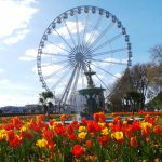 The Return of the Riviera big wheel