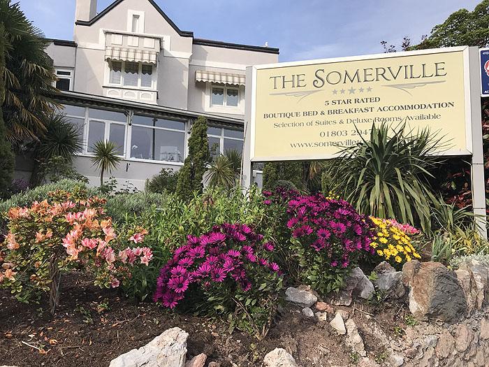 Somerville Torquay garden, summer 2020